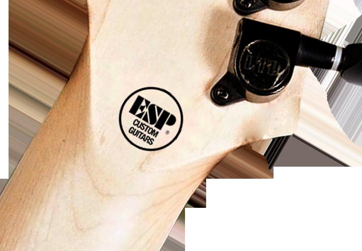 ESP Custom Guitars Logo Decal