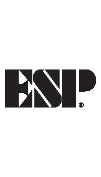 ESP Headstock Decal